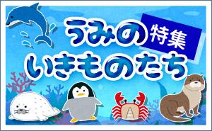 海の生き物たち特集