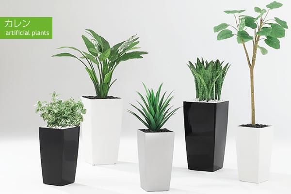 カレン 人工樹木・観葉植物