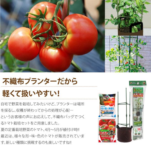 トマト栽培セット説明