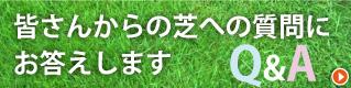皆さんからの芝に関する質問にお答えします