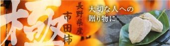 市田柿 極
