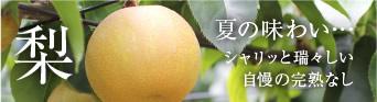 梨(幸水・豊水)
