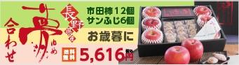 市田柿とりんごのセット