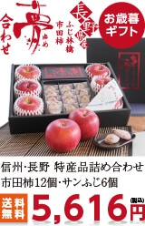 市田柿とりんごの詰合せ「夢合わせ」