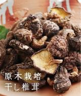 国産干し椎茸