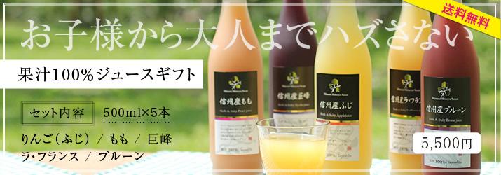 果汁100%ギフトセット