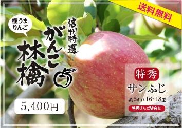 がんこ林檎5キロ