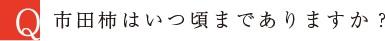 市田柿はいつ頃までありますか?