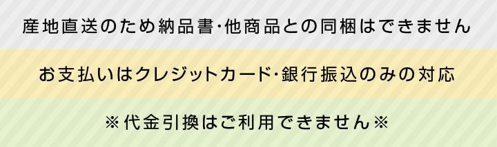 長野県産市田柿「紅熟柿」お中元の贈り物