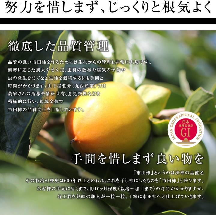 努力を惜しまず、じっくりと根気よくい市田柿を製造します。
