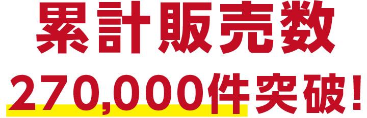 累計販売数80000件突破の大人気の市田柿