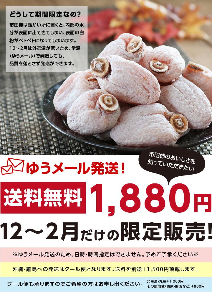 12〜2月までの期間限定販売の市田柿(干し柿) 500g 送料無料