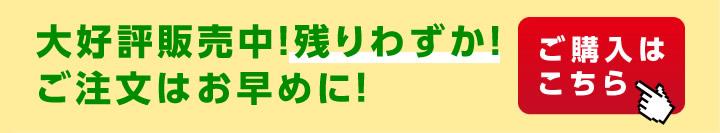 送料無料の市田柿(干し柿・干柿・渋柿)・りんご(サンふじ)お歳暮ギフト夢合わせ