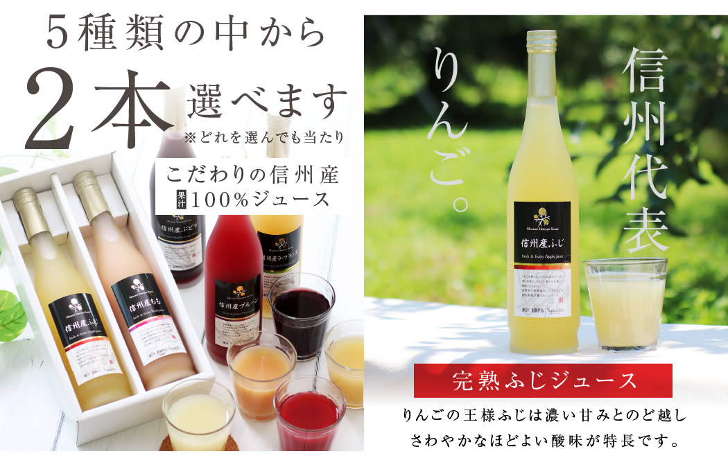 果汁100% りんごジュース