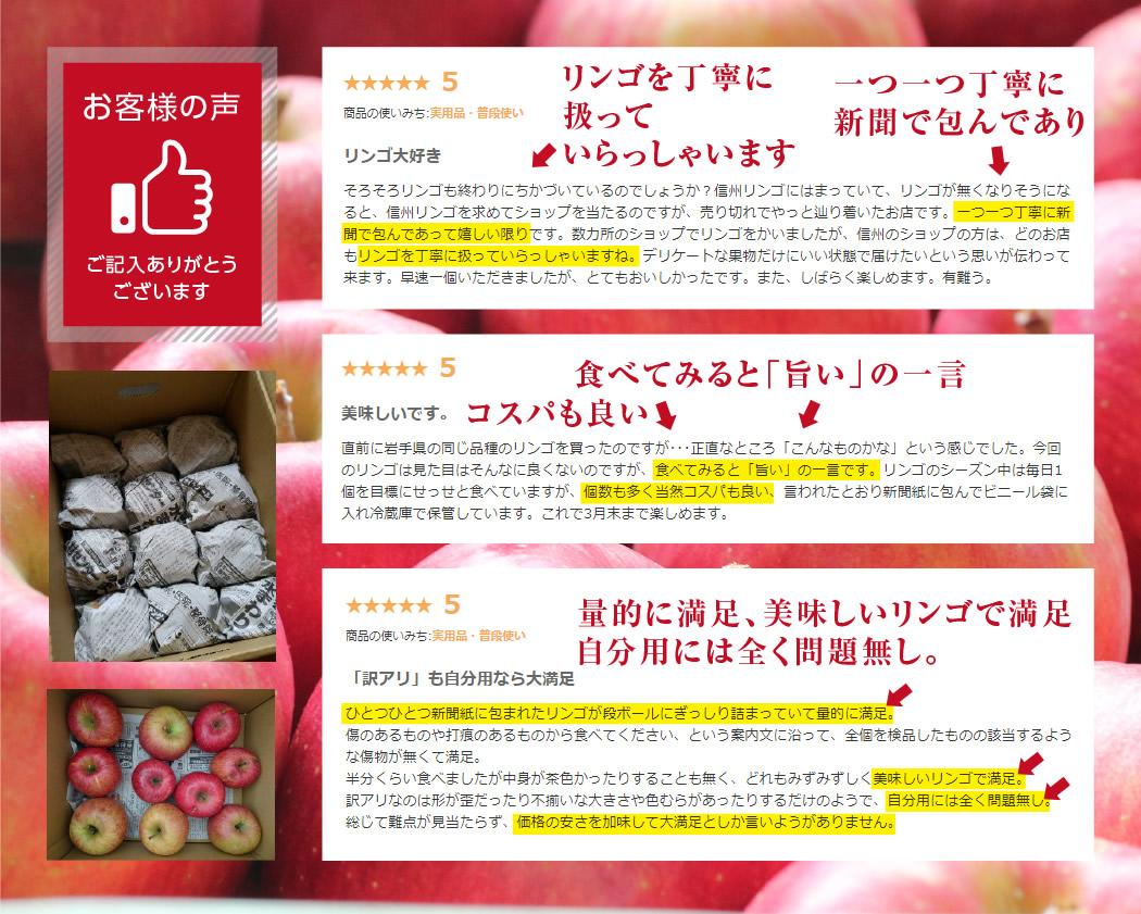 長野県産訳ありリンゴ。ご家庭用りんご