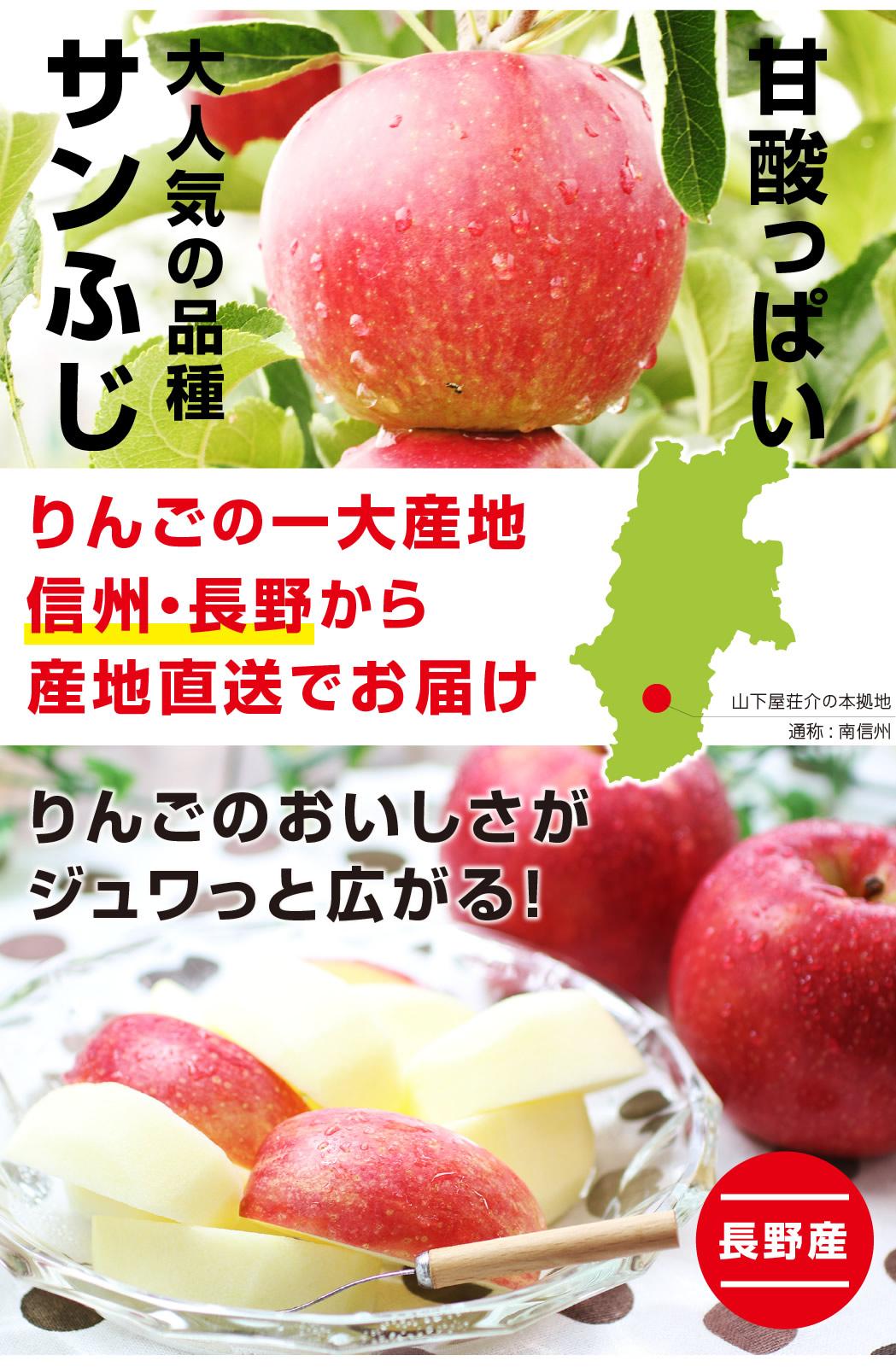 りんごの一大産地「信州・長野」から産地直送