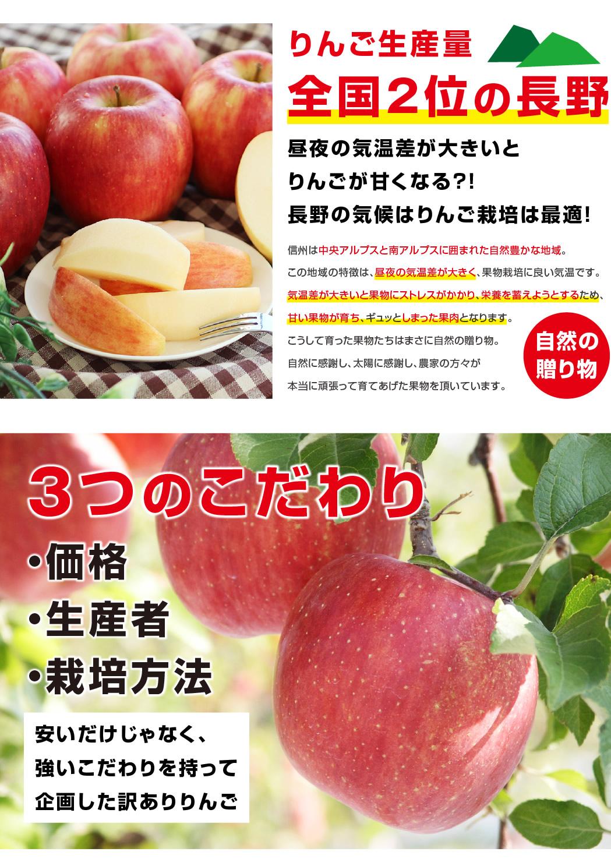 リンゴ栽培に長野の気候は最適