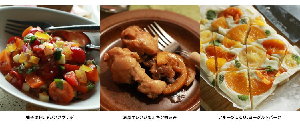 柚子のドレッシングサラダ 清見オレンジのチキン煮込み フルーツごろり、ヨーグルトバーグ