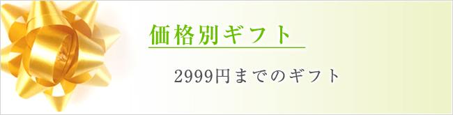 価格別2999円までのギフト