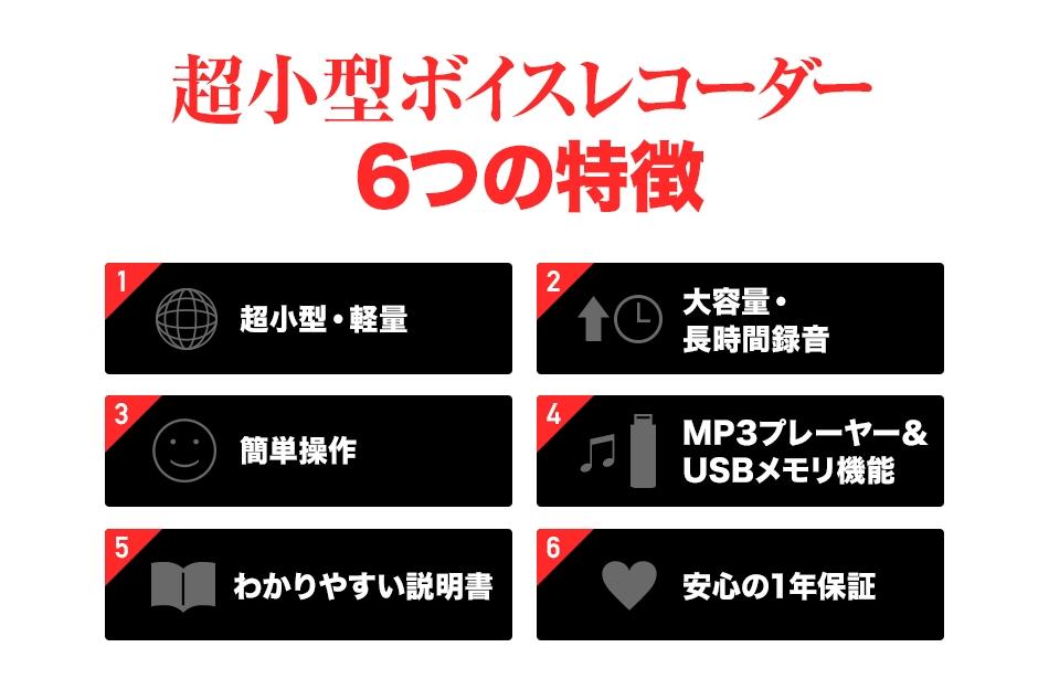 voice5.jpg