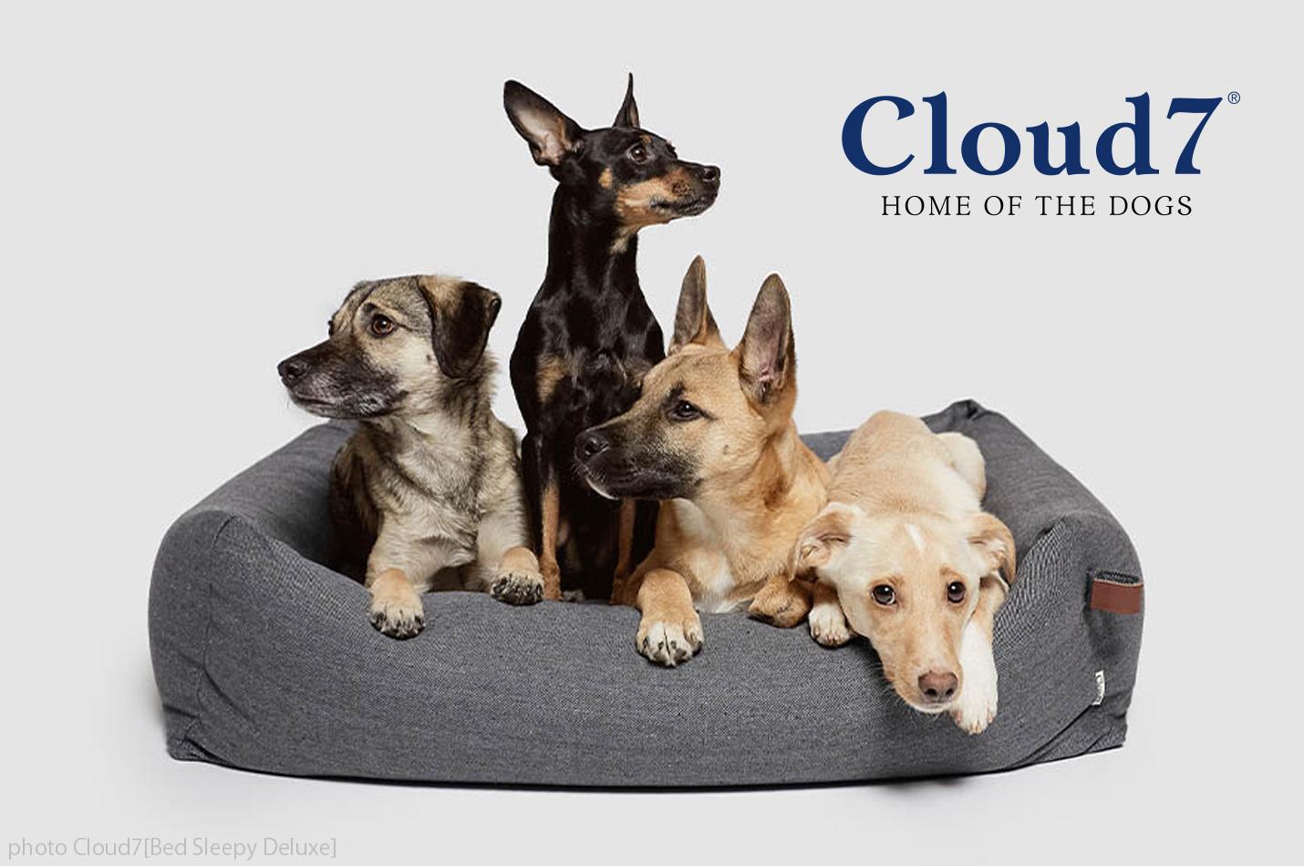 Cloud7 / クラウド・セブン : ドイツ