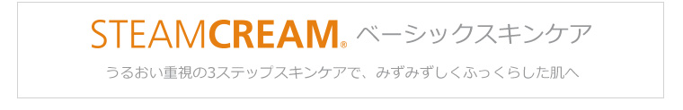 STEAM CLEAM 3ステップ