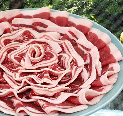 五條産ジビエ いのしし肉