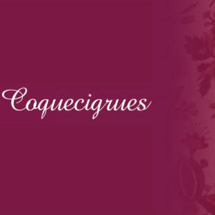 ★フランス直輸入★ Coquecigrues コクシグル フランス★ フリルクッション(フレンチピンク 花かご) 中綿付き 45cm角 輸入品 シャビーシック アンティーク風 フレンチカントリー