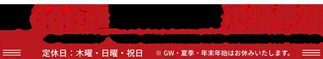 送料全国一律660円 3,980円にて送料無料