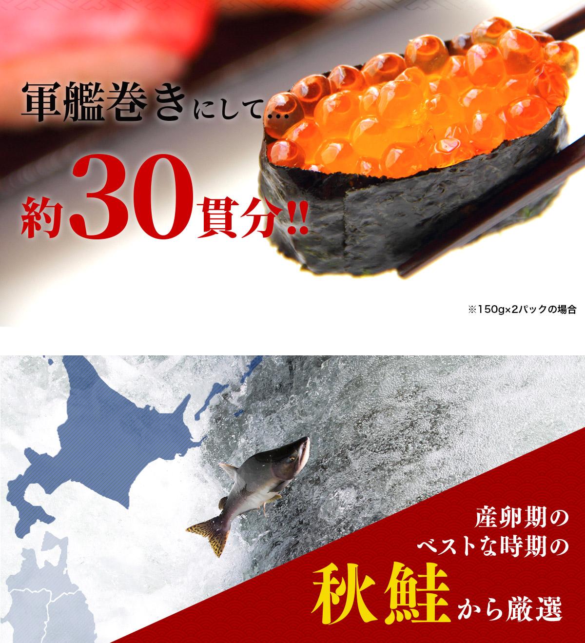 産卵期のベストな時期の秋鮭から厳選