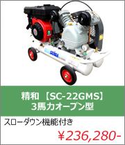 ���� ���� SCP-22GLS