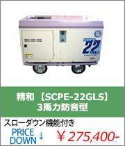 ���� ���� SC-22GRS