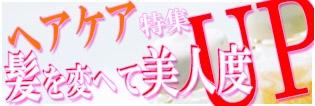ヘアケア特集 トップバナーのコピー.jpg