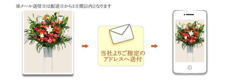 写真をメールで送付致します
