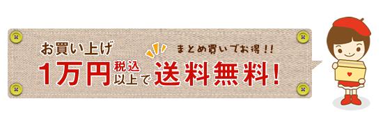 お買い上げ1万円以上で送料無料。