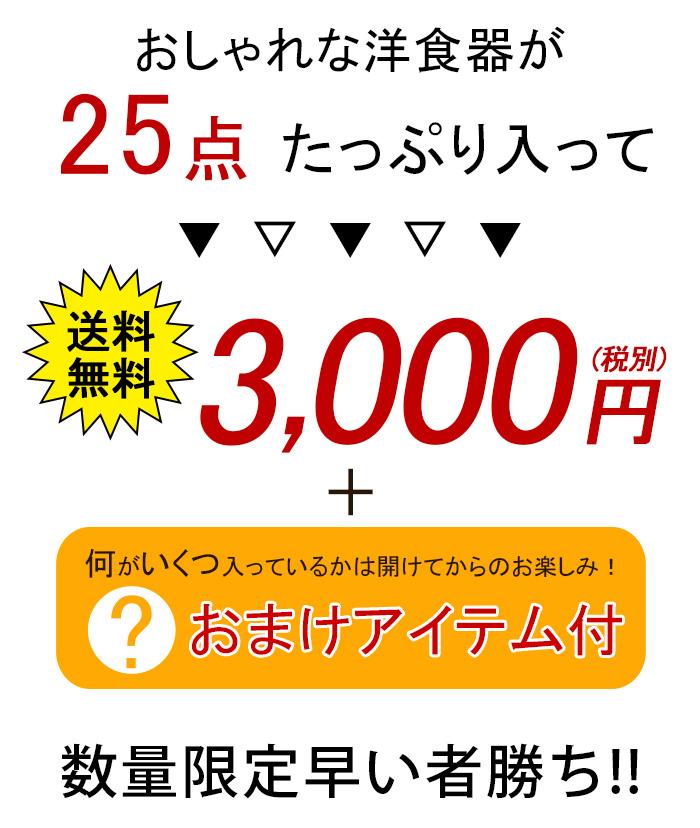 2019年福袋 オシャレな洋食器25点+オマケつき 送料無料