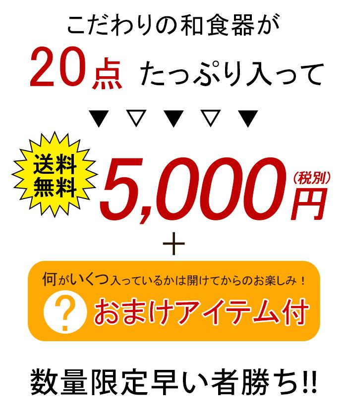 2019年福袋 こだわり和食器20点+オマケつき 送料無料