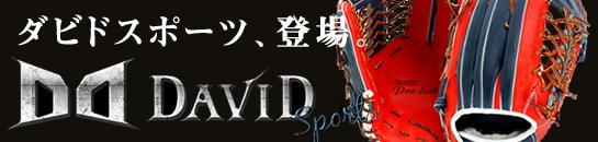 ダビドスポーツ DAVID