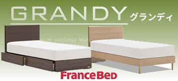 フランスベッド・グランディ