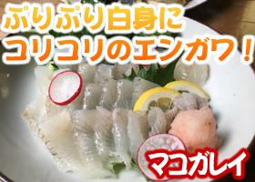 宮島ムール貝 冷凍パエリアセット