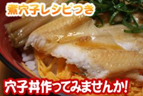 煮穴子レシピ付き 穴子丼を作ってみませんか?