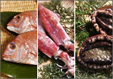 お好きな3点を選んで 「新鮮魚介類セット」