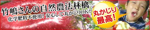 竹嶋さんの自然農法林檎