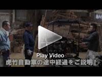 日本唯一の虎竹自動車プロジェクト!ヒロタリアン様、虎竹の里ツアー