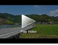 疾走!虎竹の里を行く日本唯一の虎竹自動車