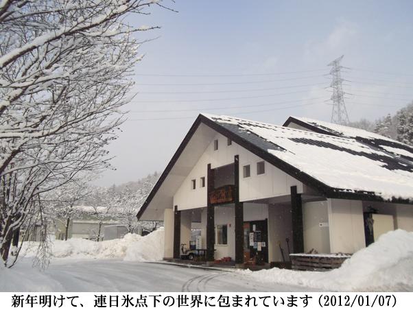 2012/01/12撮影