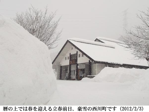 2012/02/03撮影