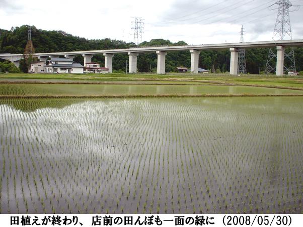 2008/05/30撮影