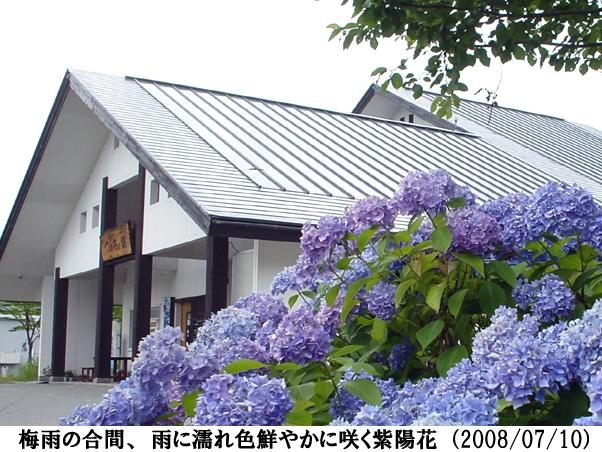 2008/07/10撮影
