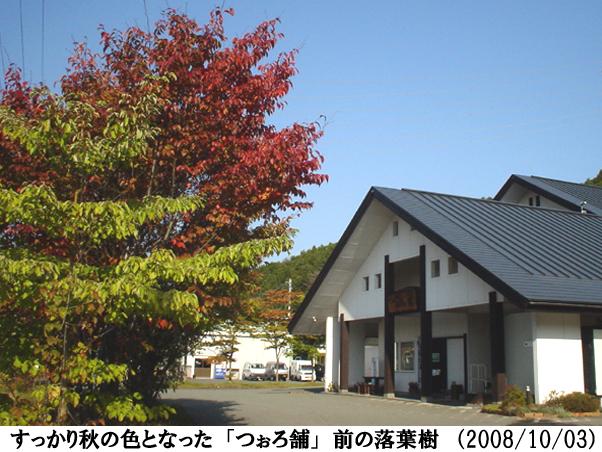 2008/10/03撮影
